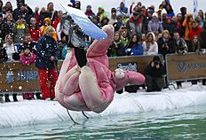 A competitor participates in the Red Bull Jump and Freeze competition at a ski resort, some 100 kilometers (62 miles) northwest of St.Petersburg, Russia,...