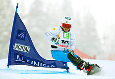 Snowboard (сноуборд): FIS Freestyle Ski & Snowboard World Championships — Men's and Women's Parallel Slalom
