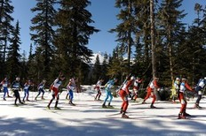 Athletes ski as they compete in the men's Biathlon 15 km mass start final at the Whistler Olympic Park during the Vancouver Winter Olympics on February 21, 2010. Ustyugov won the gold medal.