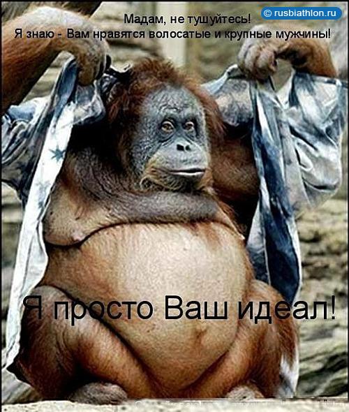 картинки джокера на аву: